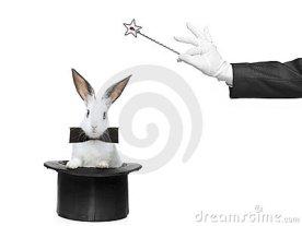 rabbit_topper_coelho_cartola
